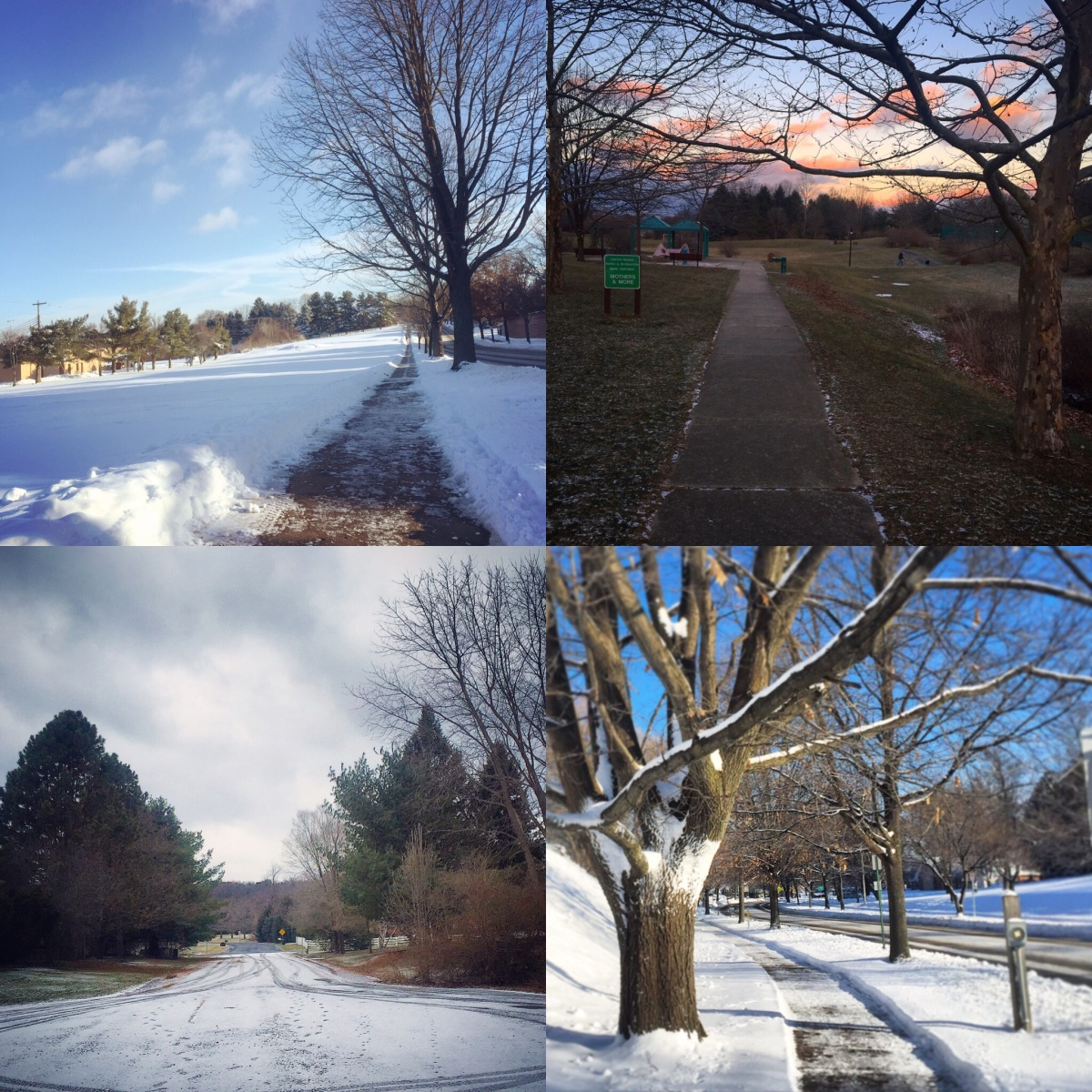 PGH Marathon training – Week 2/16
